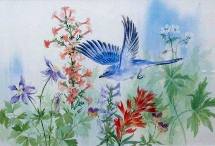 """Mountain Bluebird"" original fine art by Jean Pierre DeBernay"