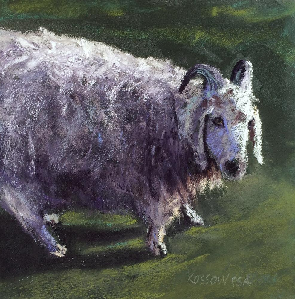 """Sheepish"" original fine art by Cristine Kossow"