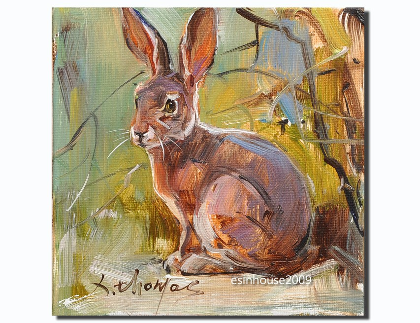 """Cony rabbit farm animals pet oil painting the origina on canvas panel 6X6"" original fine art by Thomas Xie"