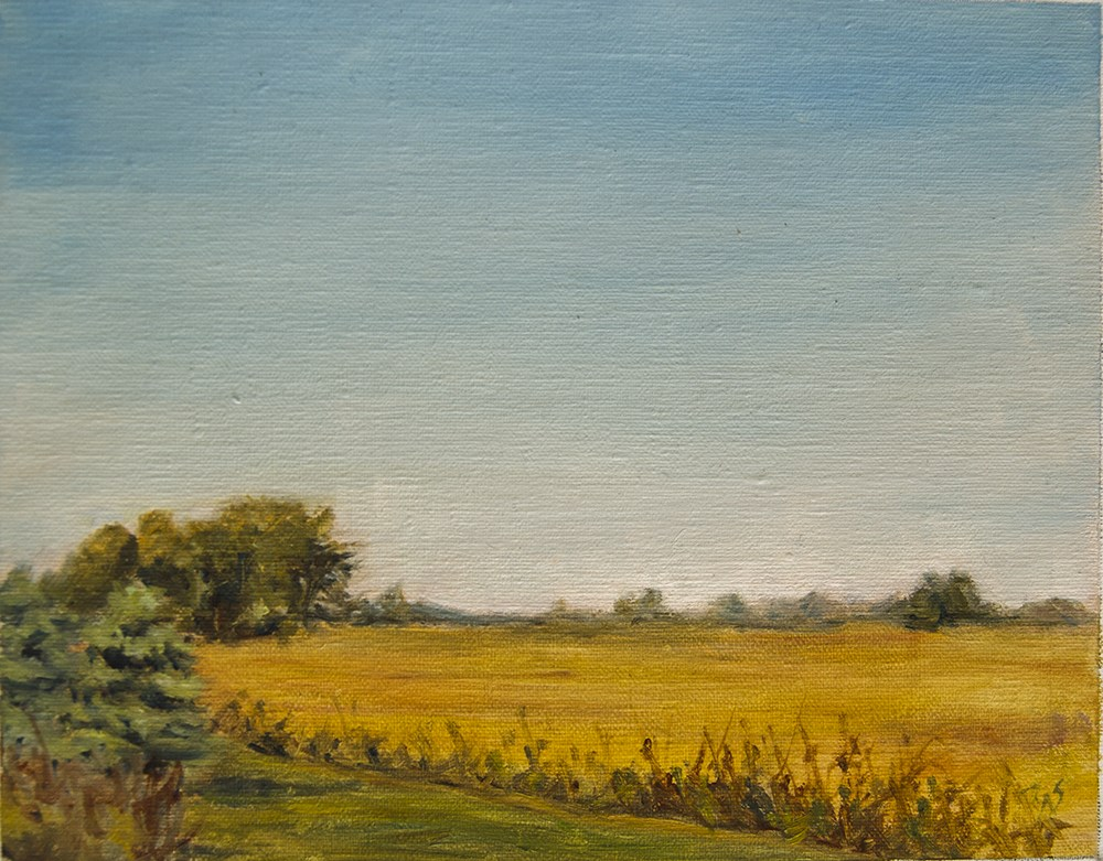 """Border of Illinois and Indiana 2015"" original fine art by Rachel Steely"