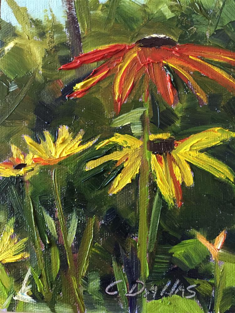 """""""Blackeyed Susan"""" original fine art by Carol Dallas"""