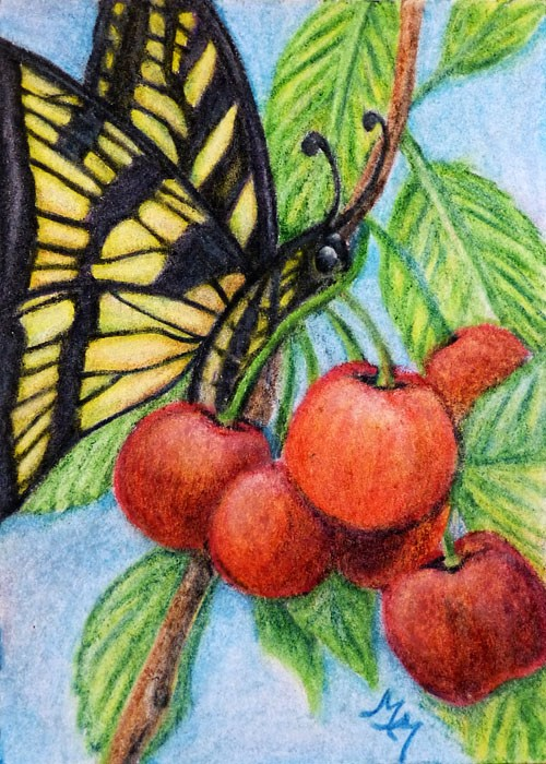 """Cherries - CP17"" original fine art by Monique Morin Matson"