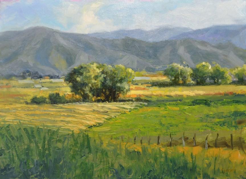 """Hayfields in July"" original fine art by Susan N Jarvis"
