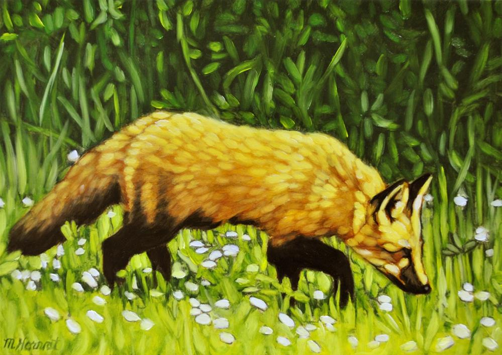 """Island Fox"" original fine art by Margaret Horvat"