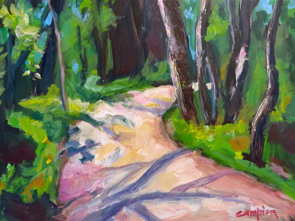 """622 Sunset Trail Veering Right"" original fine art by Diane Campion"