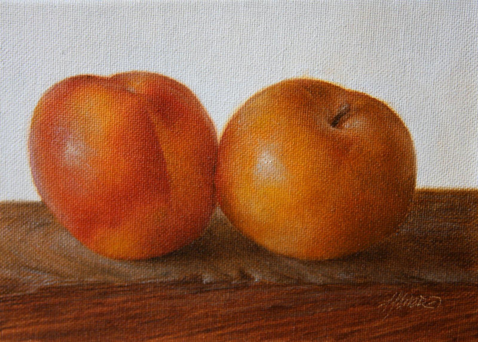 """""""Summer Punch Pluots"""" original fine art by Jonathan Aller"""