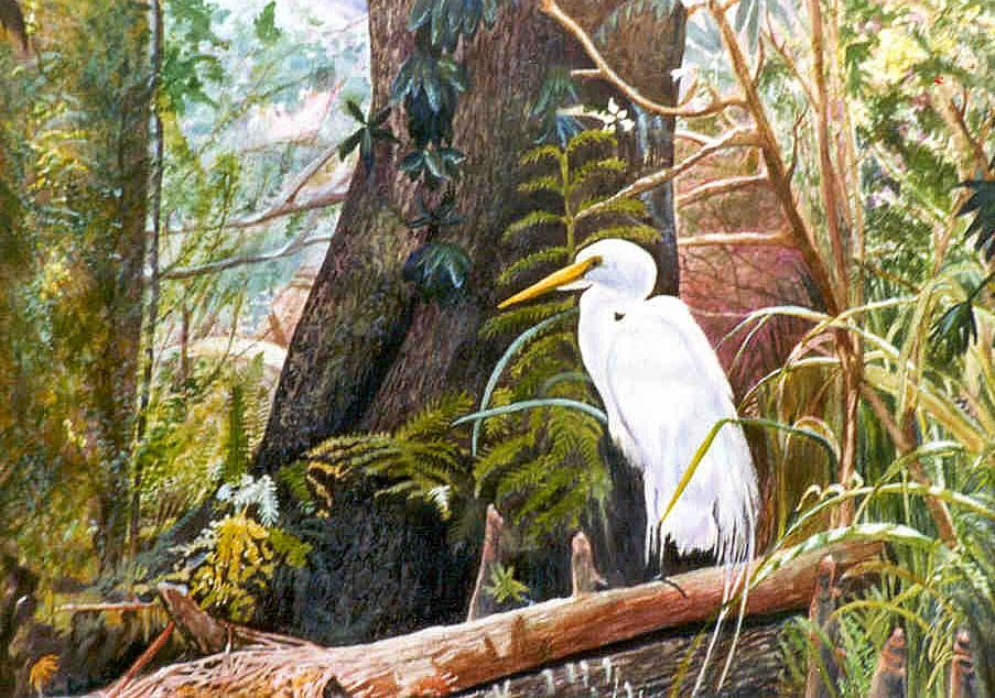 """Great White Sentinel"" original fine art by Susan Duda"