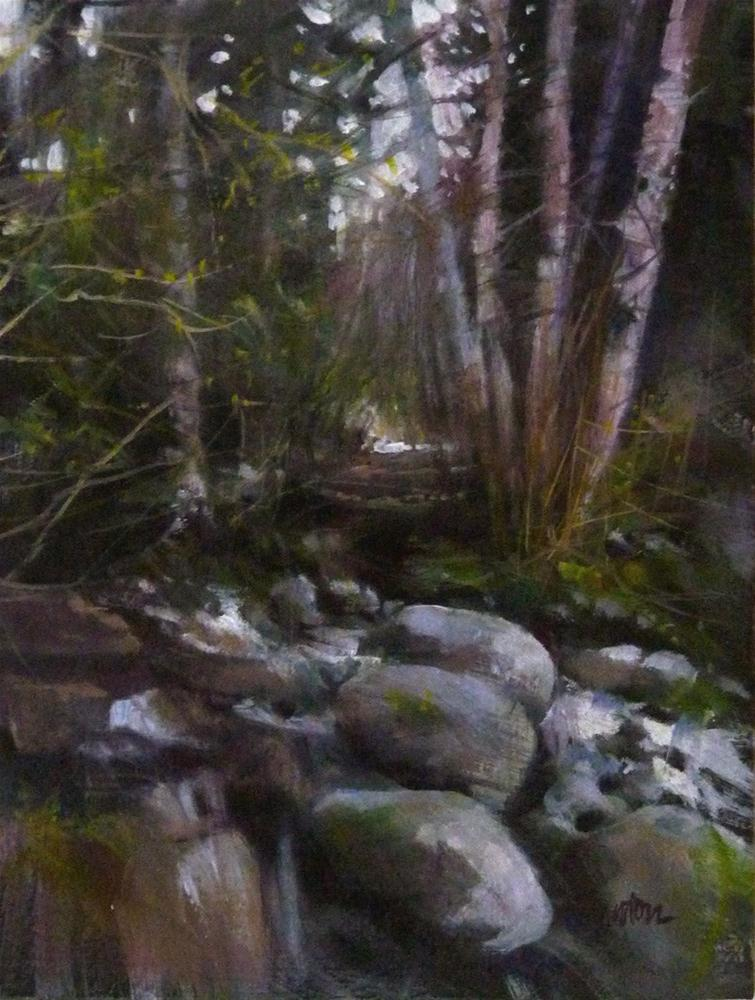 """Woodland Stream"" original fine art by Barbara Benedetti Newton"