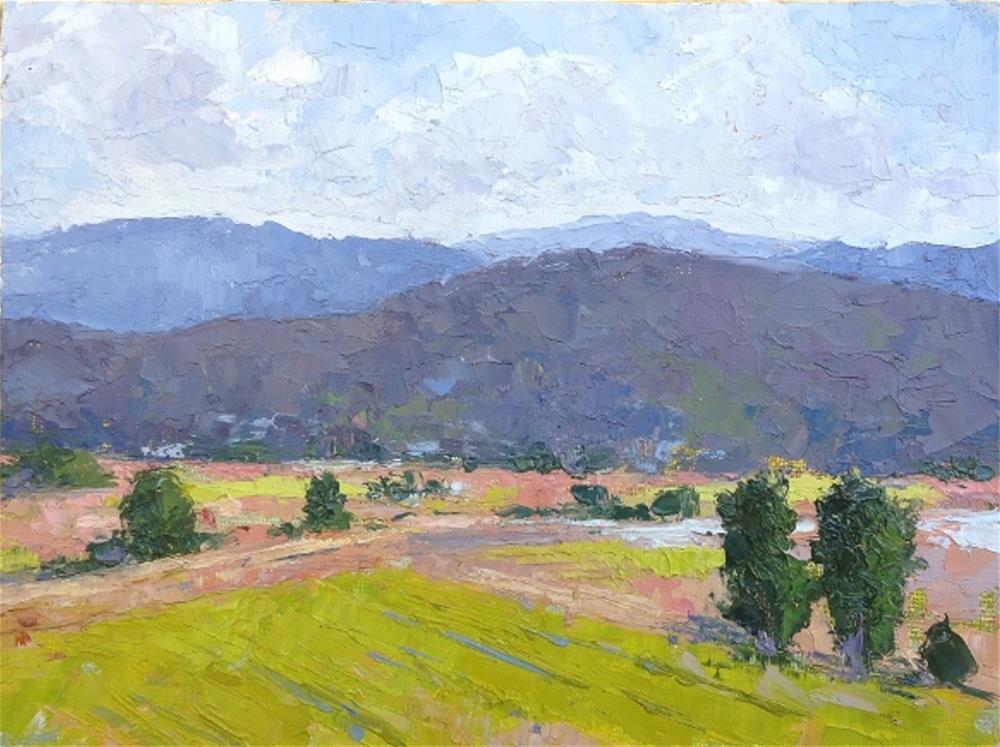 """Sonoma View from Viansa"" original fine art by Mark Bidstrup"