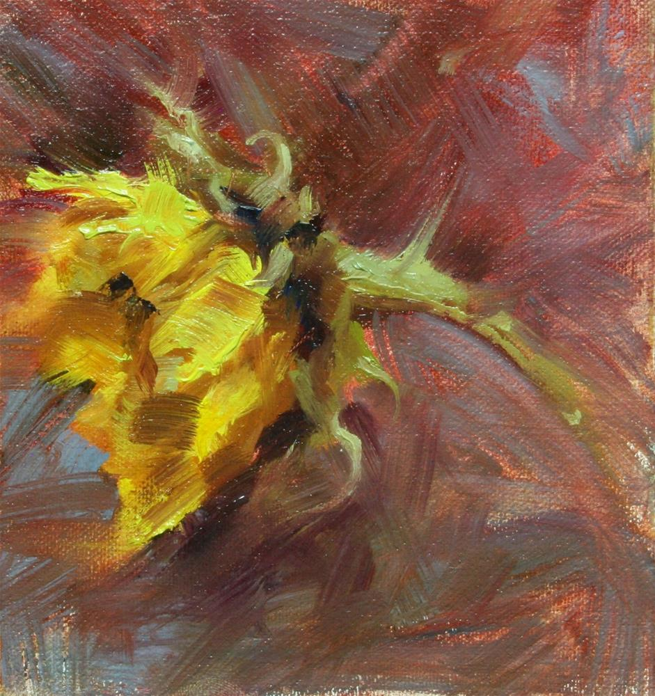 """Sunflower"" original fine art by Scott Serafica"