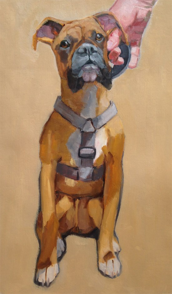 """Brown Boxer"" original fine art by Robin Rosenthal"