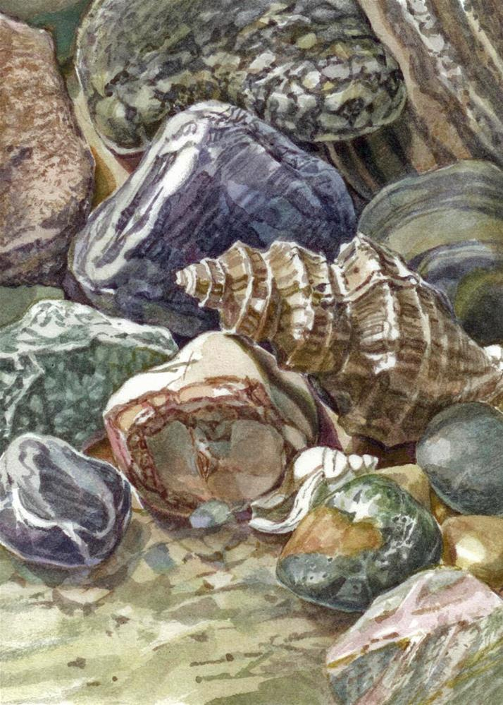 """Beaches:That Shell"" original fine art by Nicoletta Baumeister"