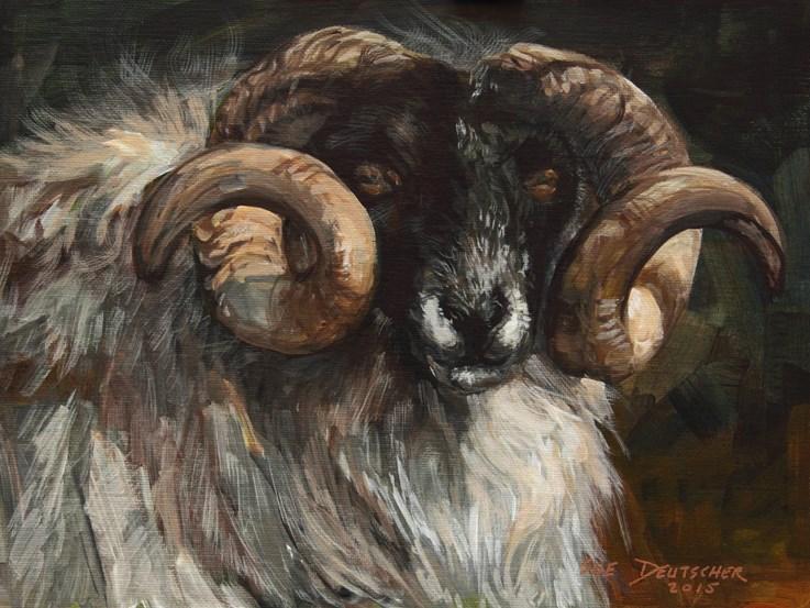 """""""Scottish Blackface Sheep"""" original fine art by Sue Deutscher"""