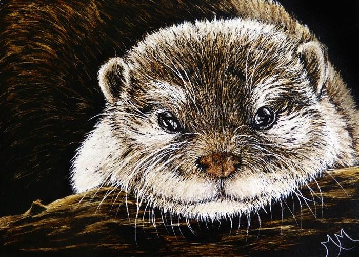 """Otter"" original fine art by Monique Morin Matson"