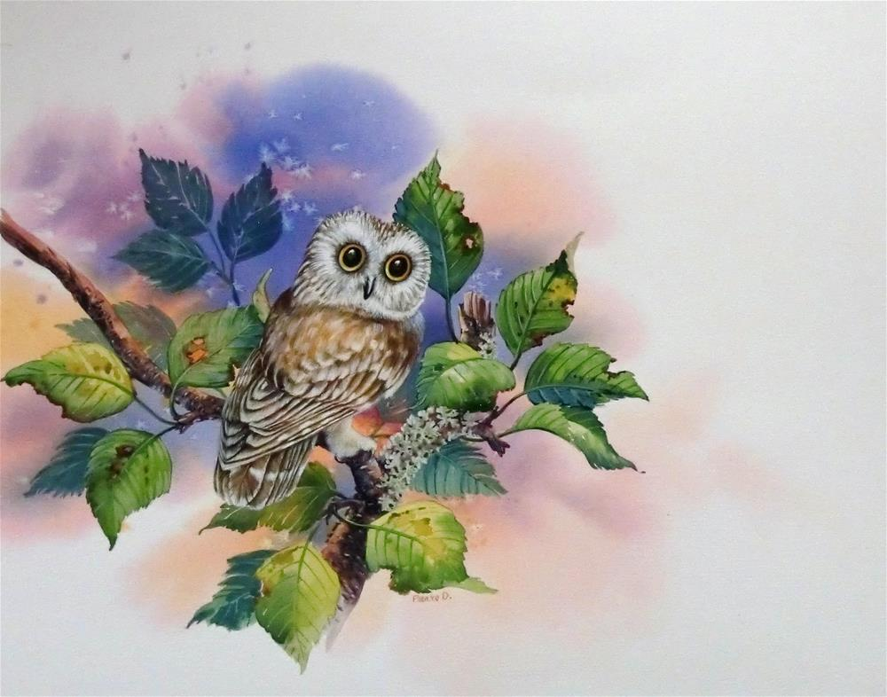 """Saw-Whet Owl"" original fine art by Jean Pierre DeBernay"