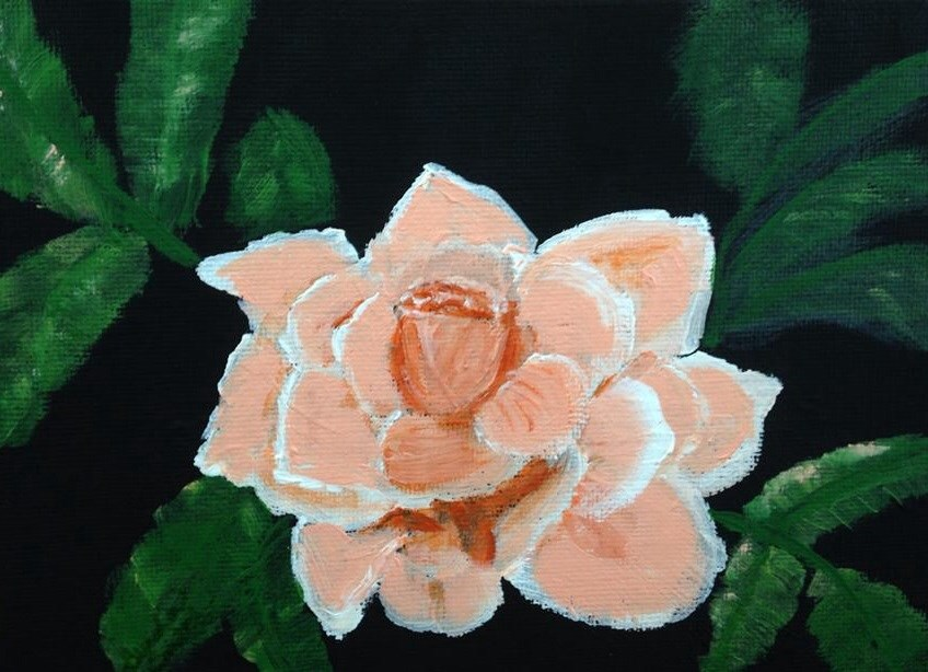 """Rose"" original fine art by Brenda Smith"