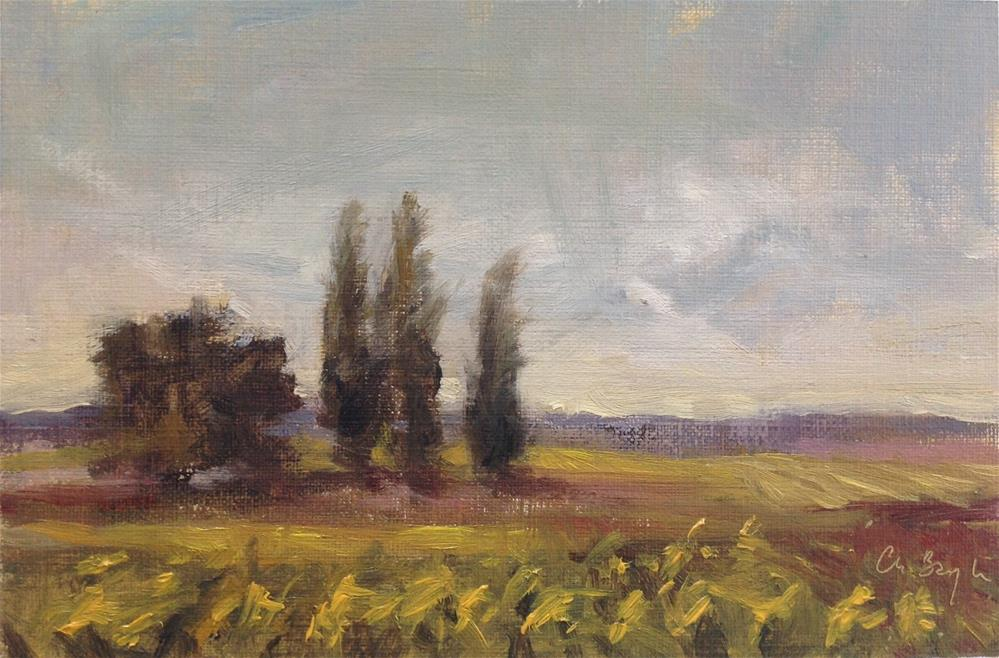 """Sunflowers fields, late afternoon"" original fine art by Christine Bayle"