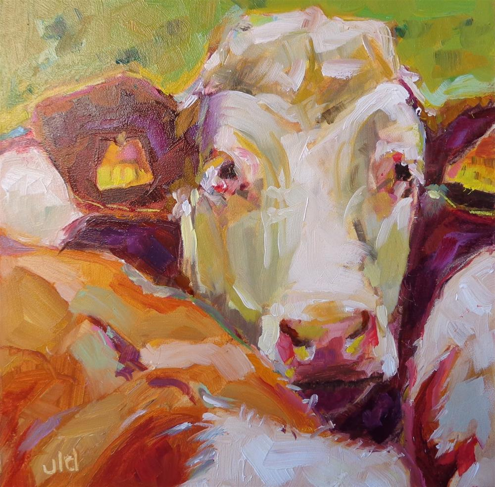 """Cow 74 THREE'S A CROWD"" original fine art by Jean Delaney"