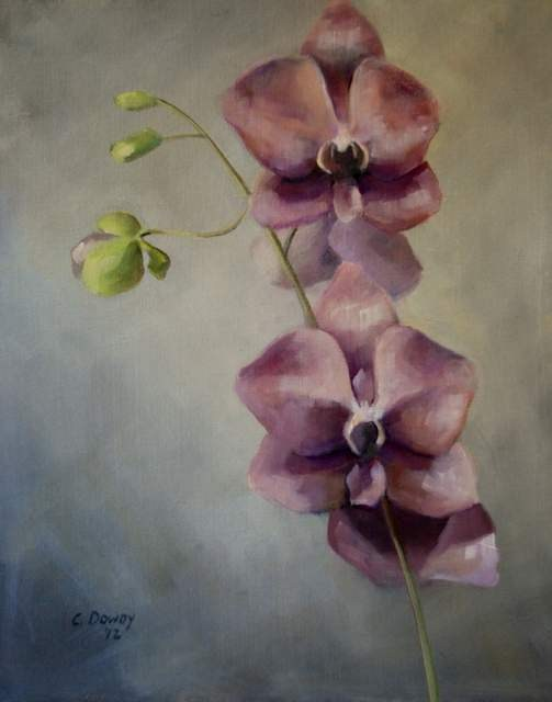 """Orchid II"" original fine art by Christina Dowdy"