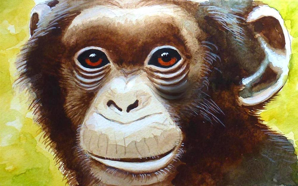 """Chimp"" original fine art by John Monney"