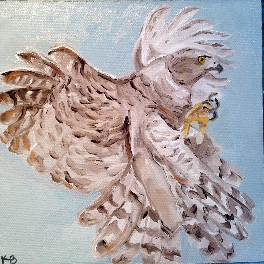 """The Goshawk"" original fine art by Kim Boyer"