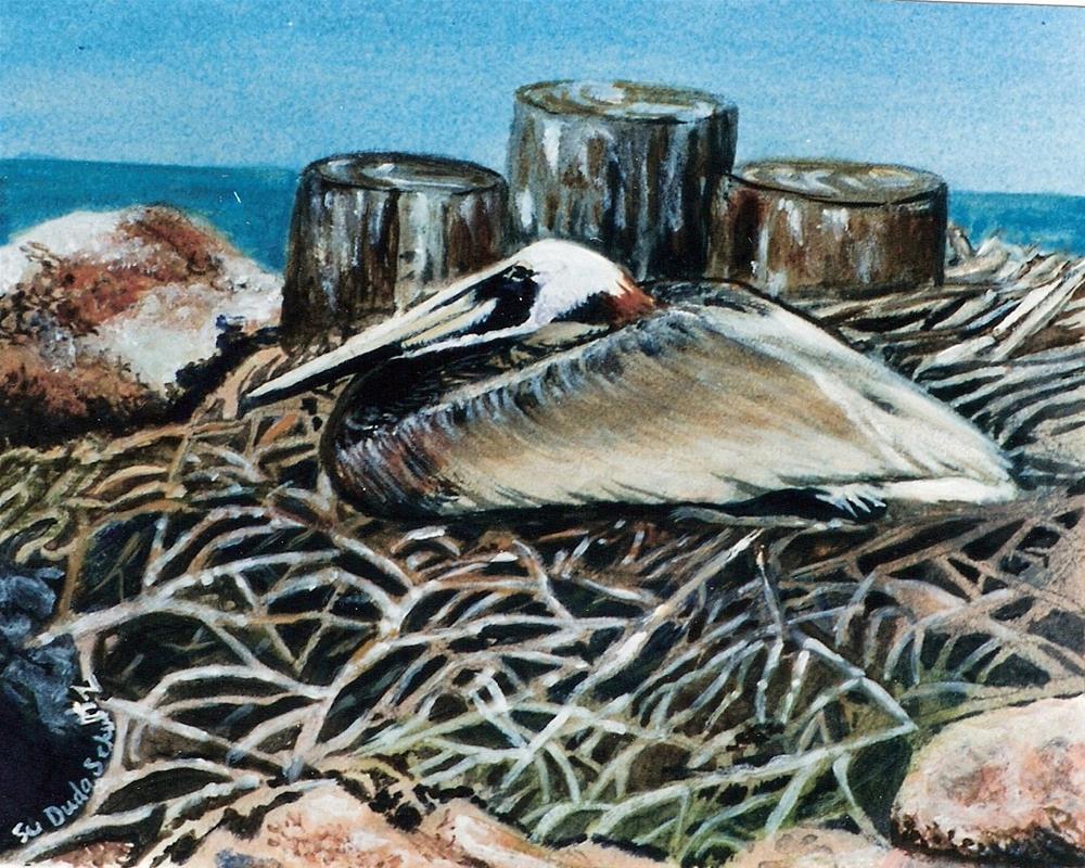 """""""Nesting"""" original fine art by Susan Duda"""