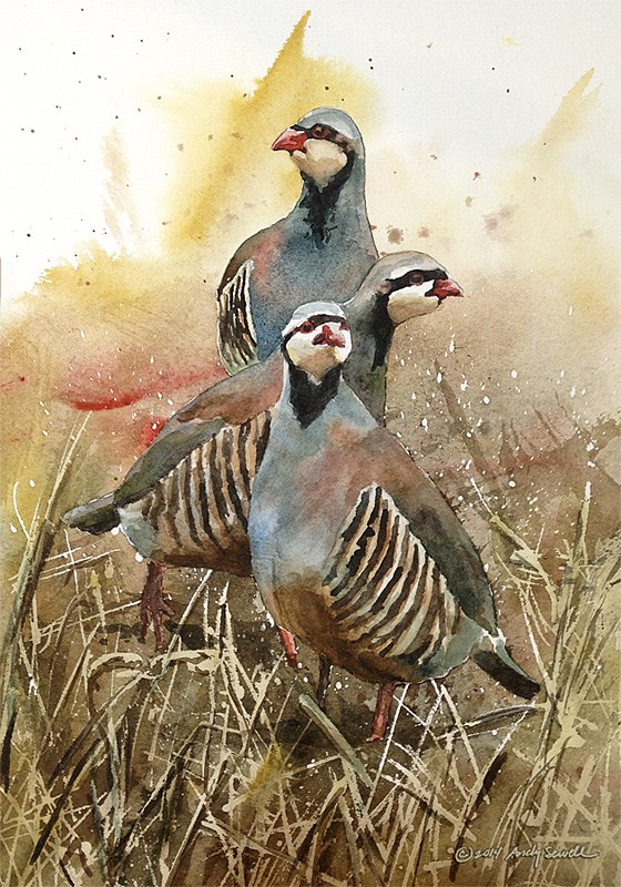 """The Three Chukateers"" original fine art by Andy Sewell"