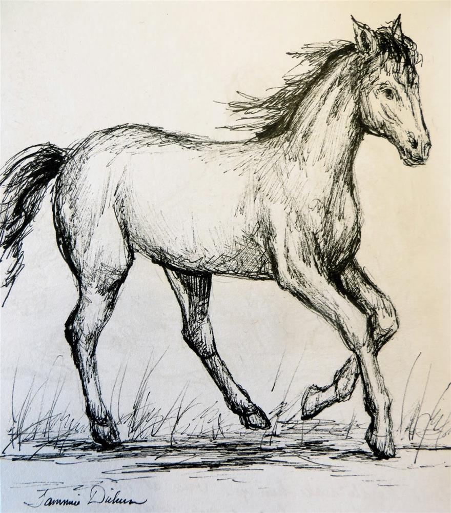 """Horse in Motion - Ink"" original fine art by Tammie Dickerson"