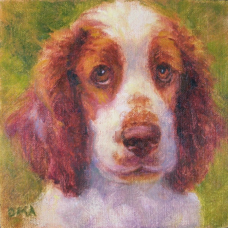 """Welshie"" original fine art by Debra Ames"