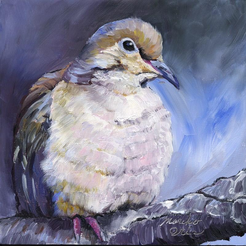 """""""Mourning Dove"""" original fine art by Mariko Irie"""