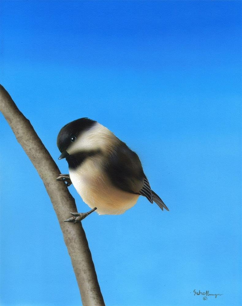 """Springtime Perch"" original fine art by Fred Schollmeyer"