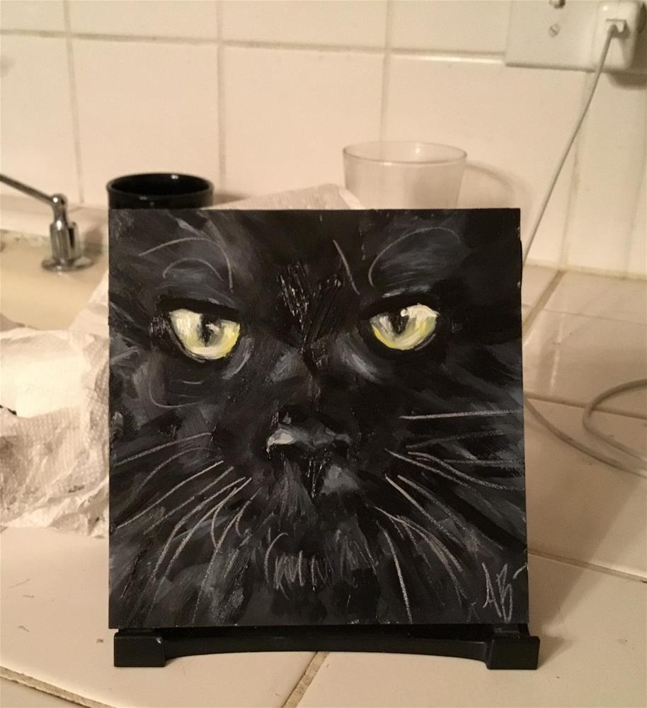 """Cat in Black"" original fine art by Annette Balesteri"