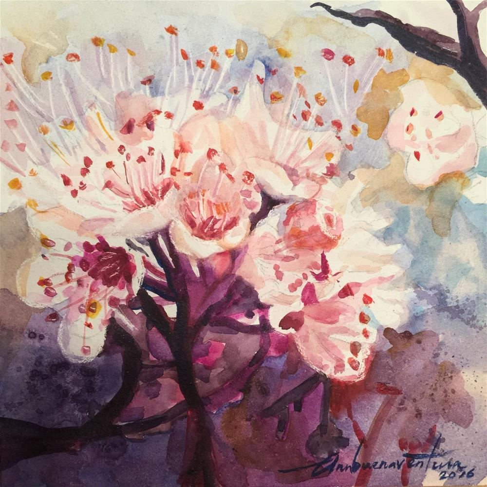 """Cherry Blossoms 2"" original fine art by Ann Buenaventura"