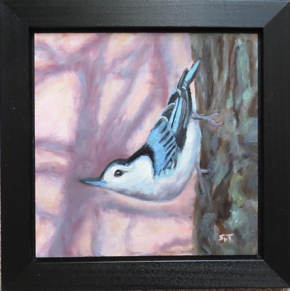 """Nuthatch"" original fine art by Sue van Tonningen"