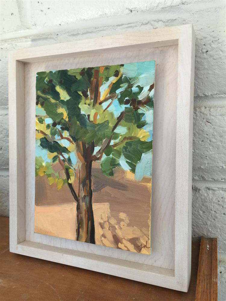 """Pine Study"" original fine art by Jessie Dodington"