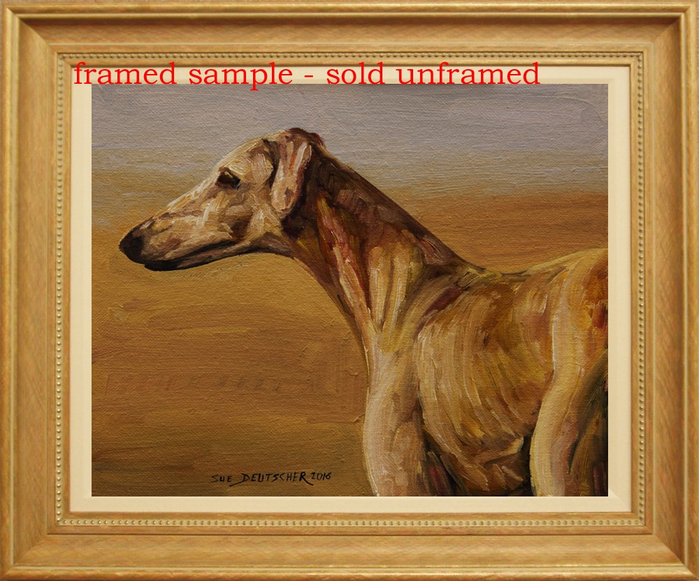 """""""Saluki Looks Left"""" original fine art by Sue Deutscher"""