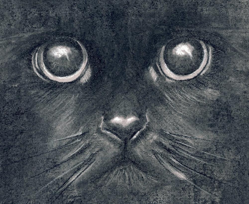 """Seeing in the Dark"" original fine art by Paulette Farrell"