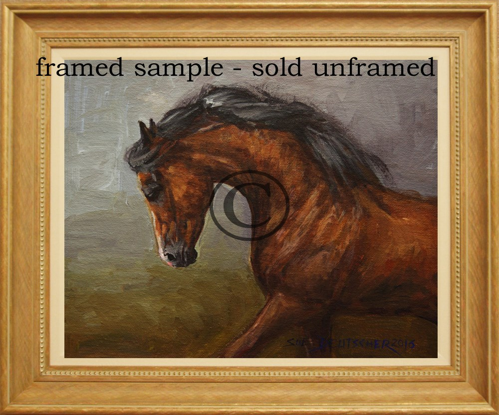 """Bay Arabian Stallion"" original fine art by Sue Deutscher"
