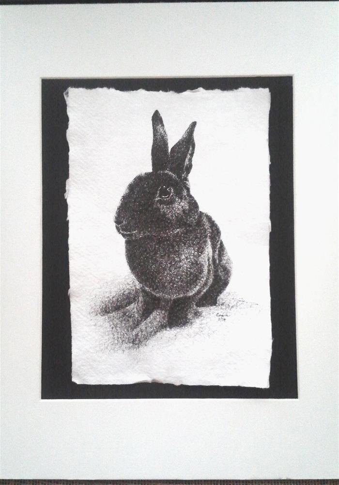 """""""Black Bunny Rabbit"""" original fine art by Camille Morgan"""