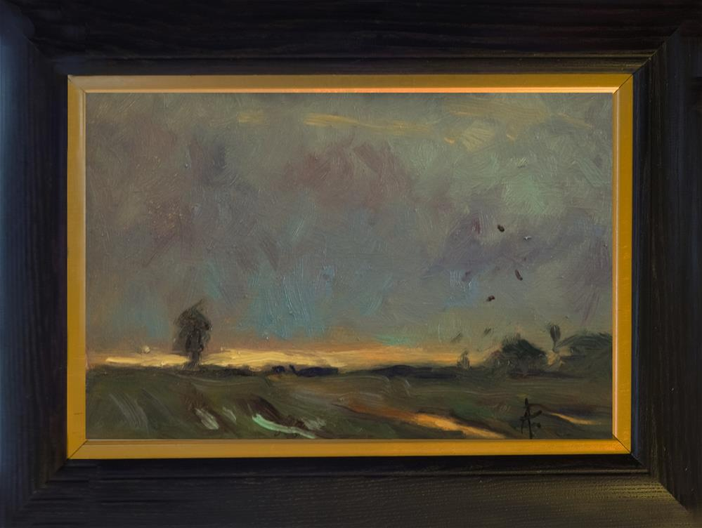 """Evening Sky with Birds"" original fine art by Andre Pallat"