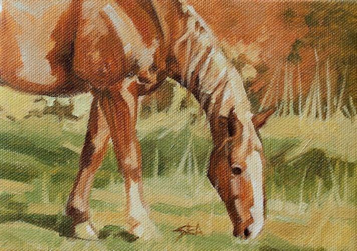 """Fall Colors"" original fine art by Susan Ashmore"