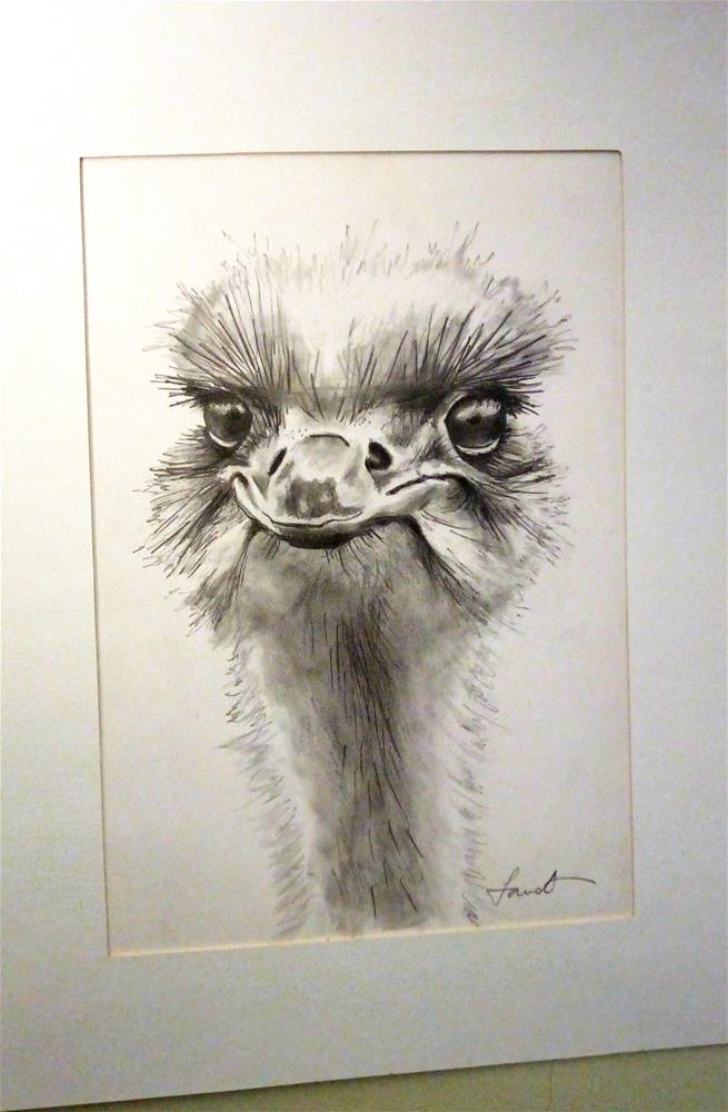 """Ostrich"" original fine art by Laura B."