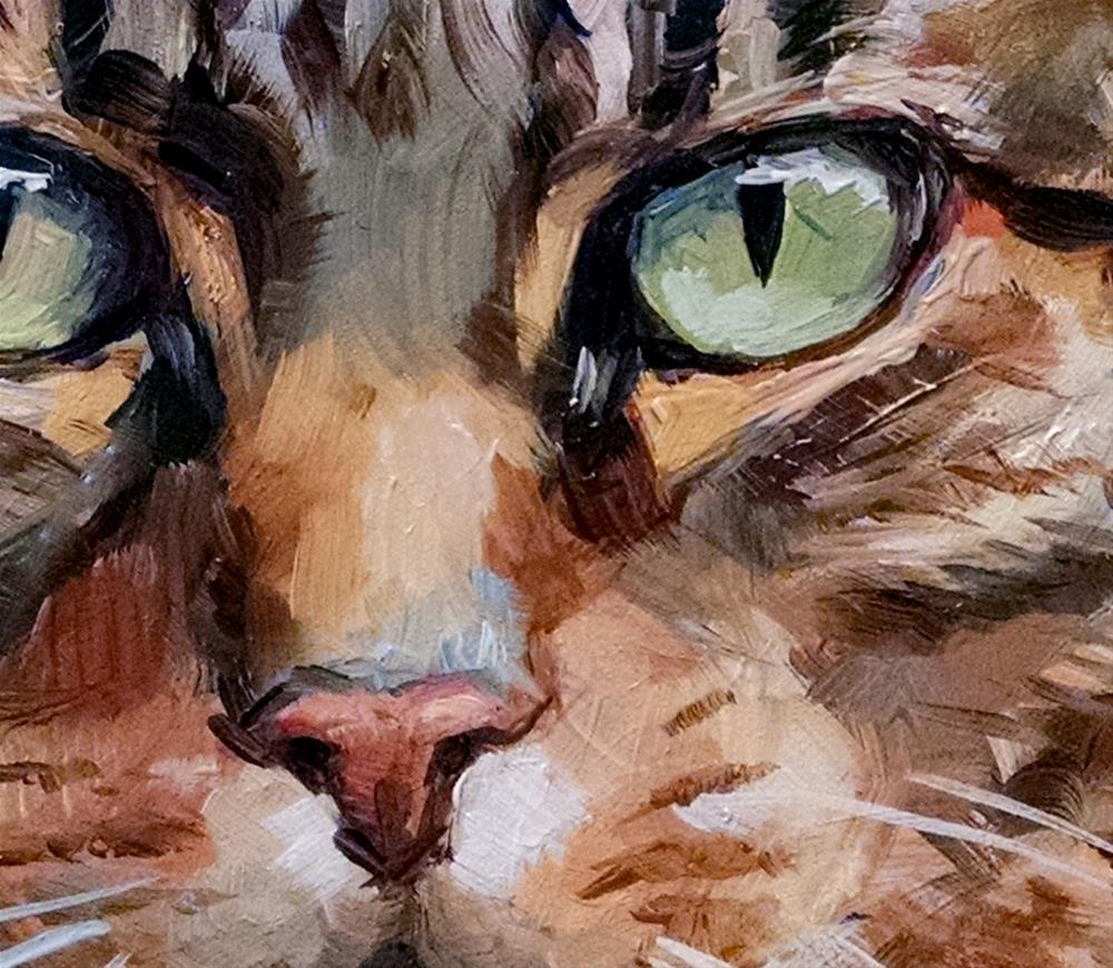 """Tabby Tabby Tabby"" original fine art by J. Dunster"
