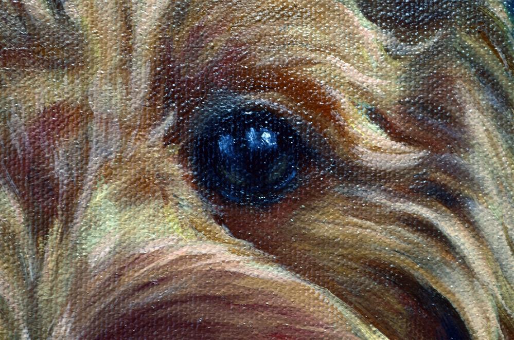 """Perfect Mix goldendoodle"" original fine art by Sun Sohovich"