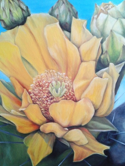 """Yellow Cactus Flower"" original fine art by Camille Morgan"
