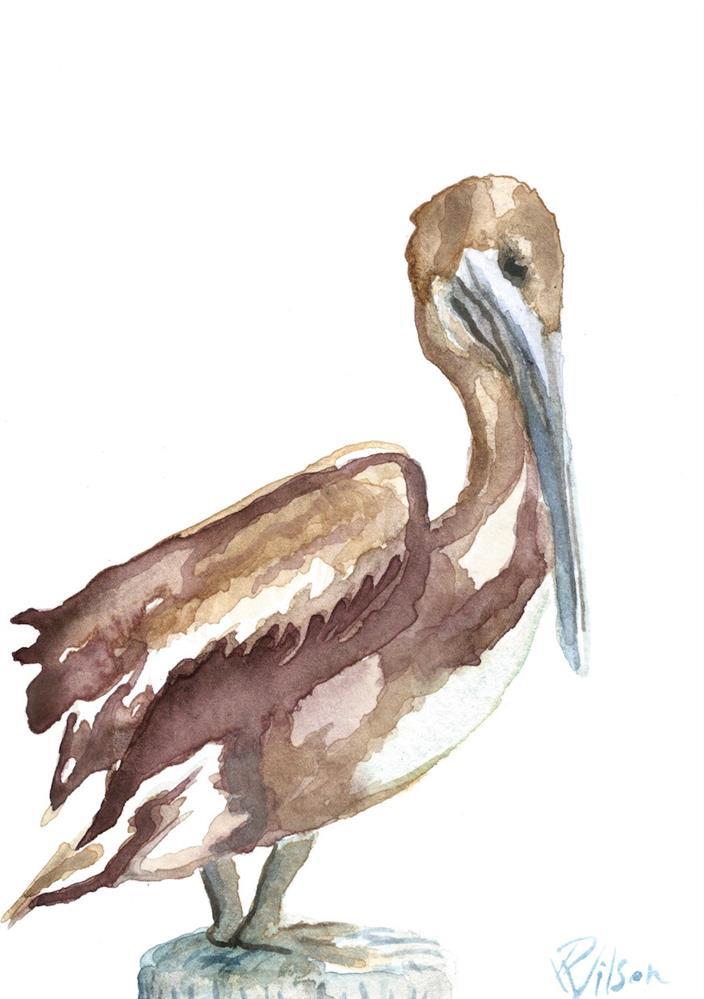 """""""Pelican study"""" original fine art by D. Renee Wilson"""