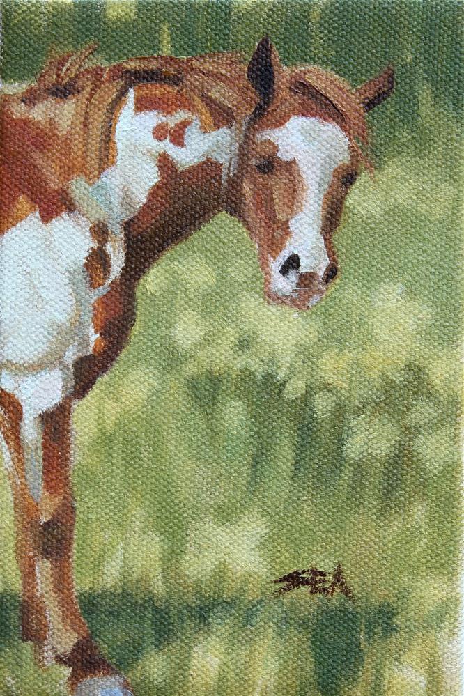 """Meadow XX"" original fine art by Susan Ashmore"