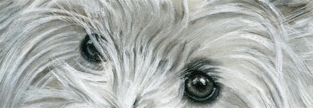 """""""That Westie Look"""" original fine art by Paulette Farrell"""