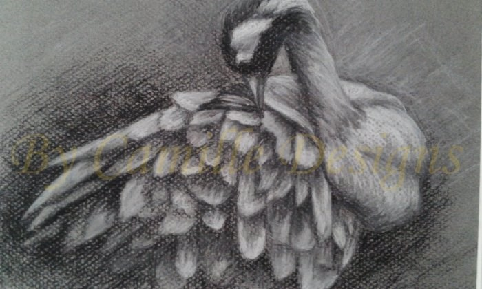 """Common Crane"" original fine art by Camille Morgan"