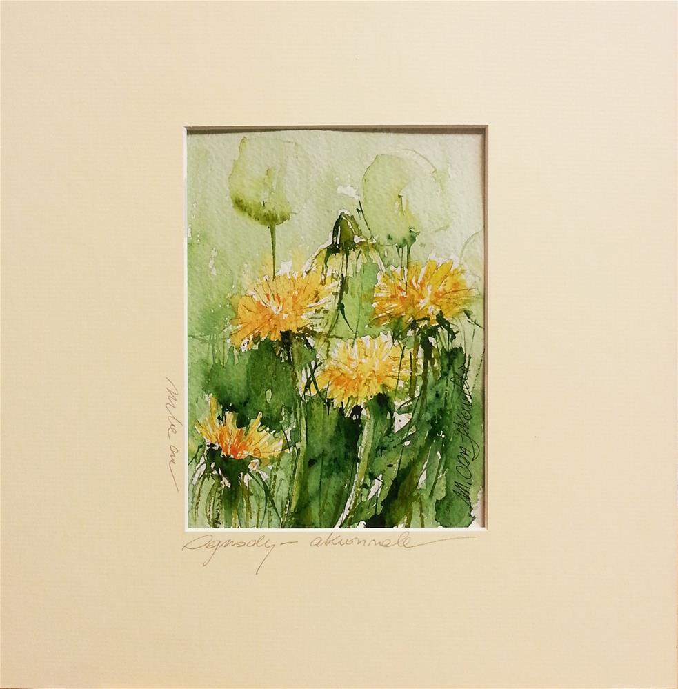 """""""Dadelion 7"""" original fine art by Marlena Czajkowska"""